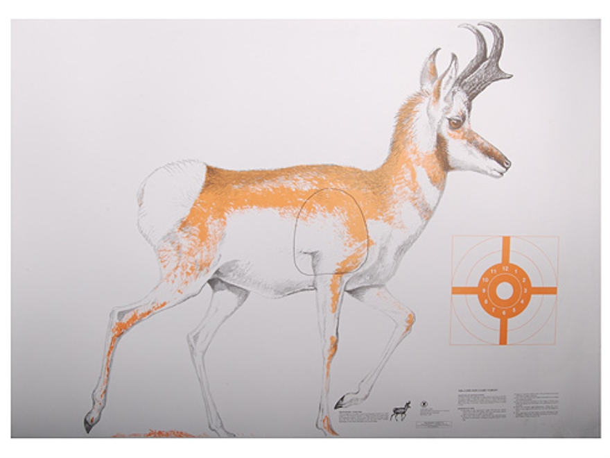 image relating to Printable Deer Targets named Taking pictures Plans Roughrider Outside